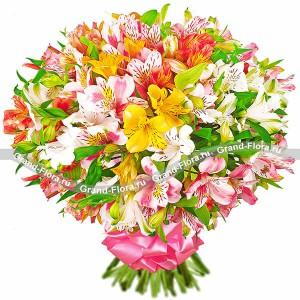 Прохладный цветы с доставкой купить цветы жасмин лекарственный